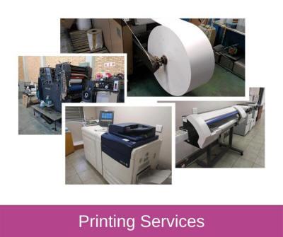 Printing & Custom Print Services